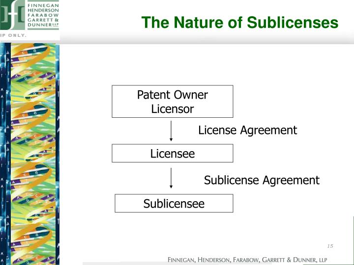 The Nature of Sublicenses