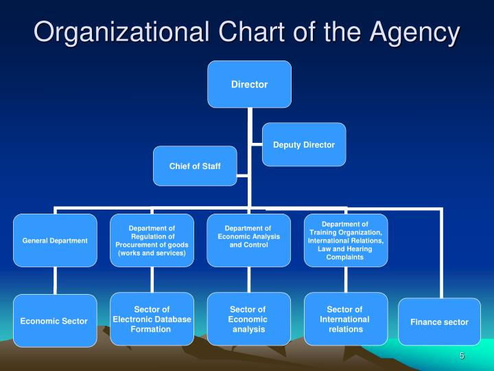 Organizational Chart of the Agency