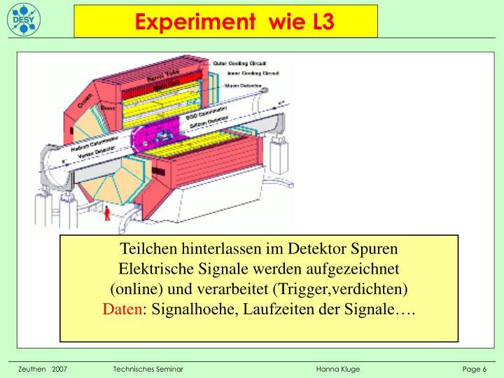 Experiment  wie L3