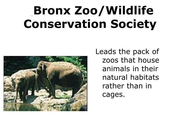 Bronx Zoo/Wildlife Conservation Society