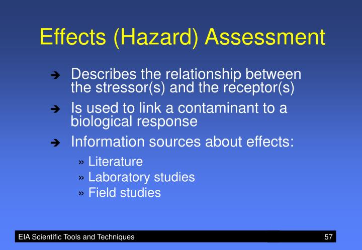 Effects (Hazard) Assessment