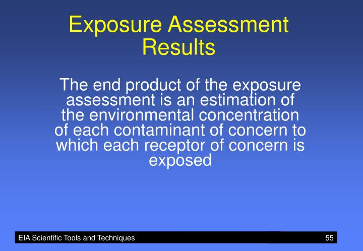 Exposure Assessment Results