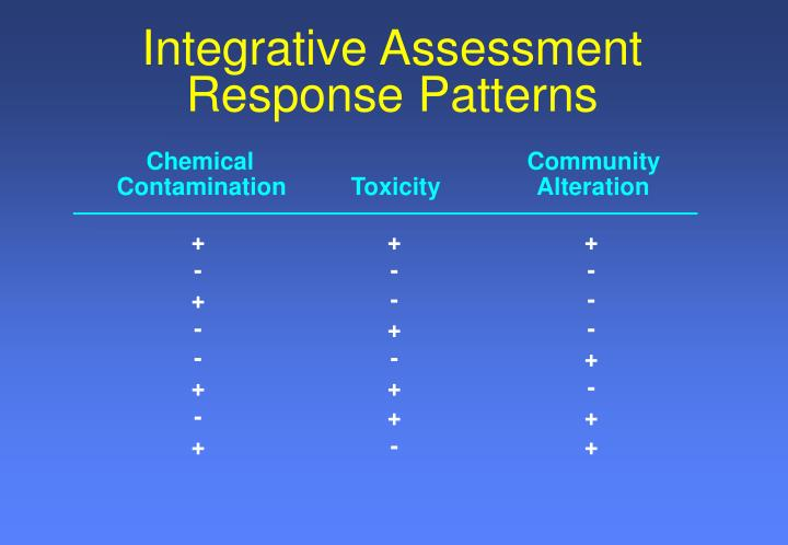 Integrative Assessment Response Patterns