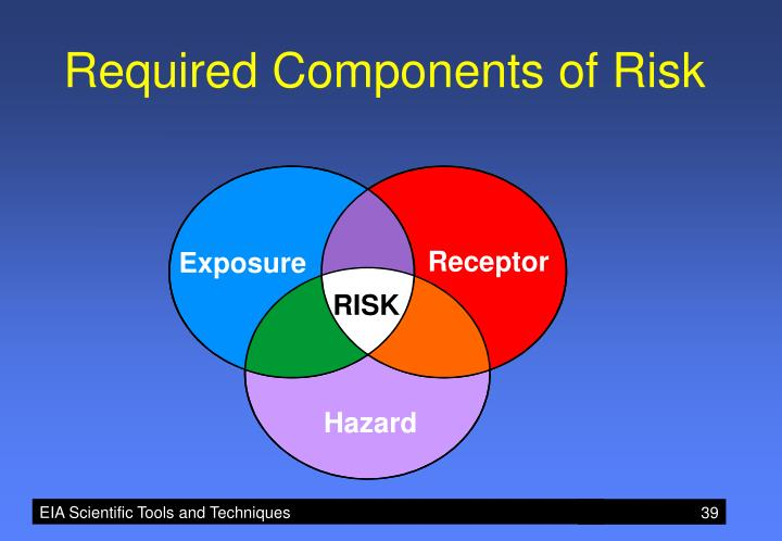 Required Components of Risk