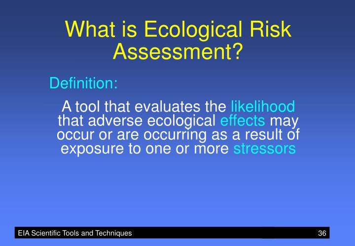 What is Ecological Risk Assessment?
