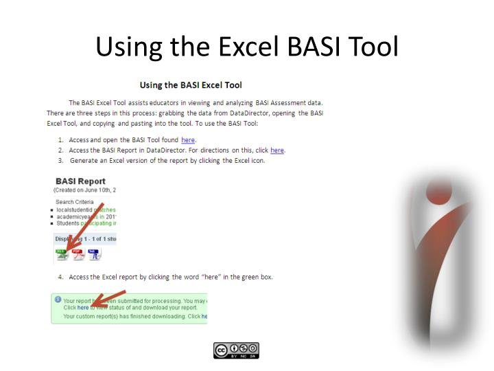 Using the Excel BASI Tool