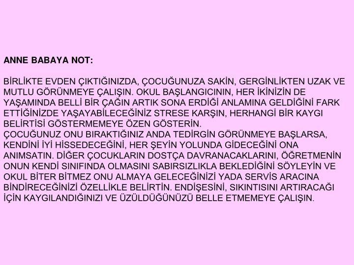 ANNE BABAYA NOT: