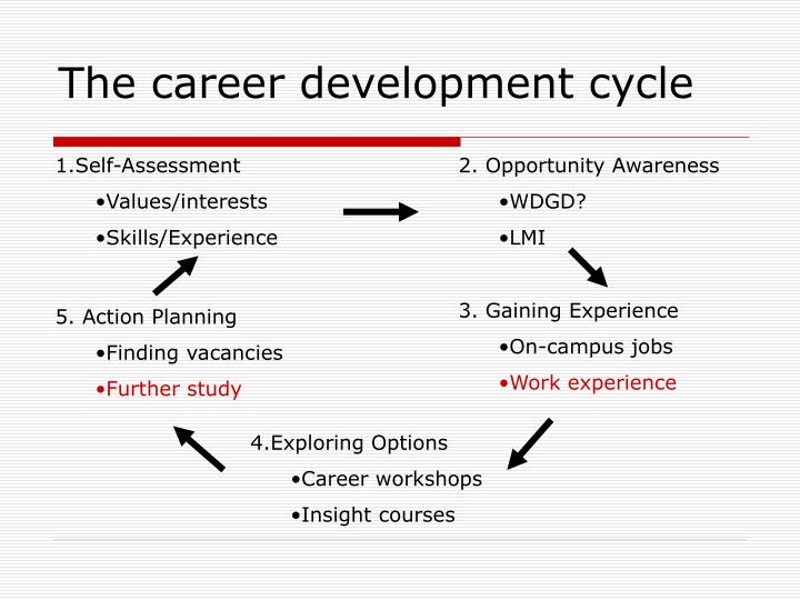 The career development cycle