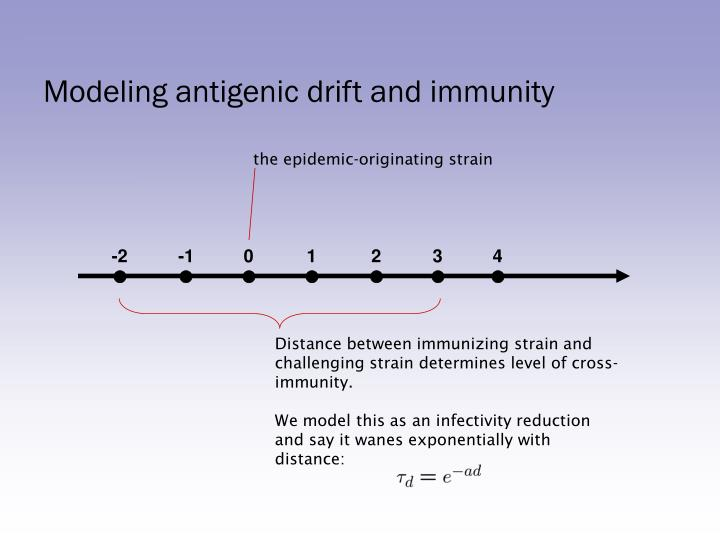 Modeling antigenic drift and immunity