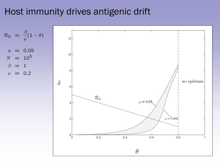 Host immunity drives antigenic drift
