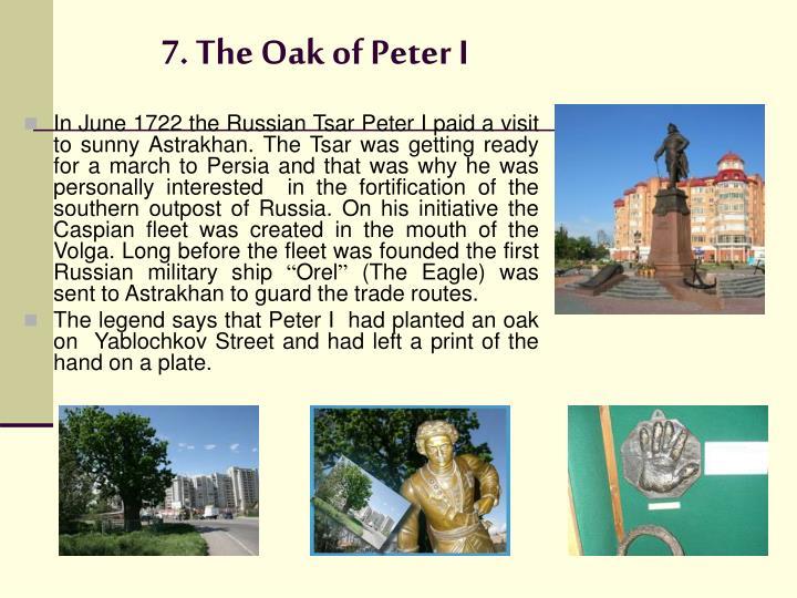 7. The Oak of Peter I