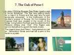 7 the oak of peter i