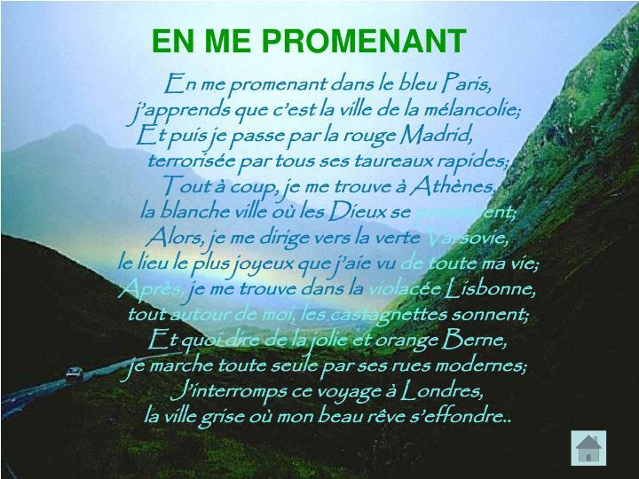 EN ME PROMENANT