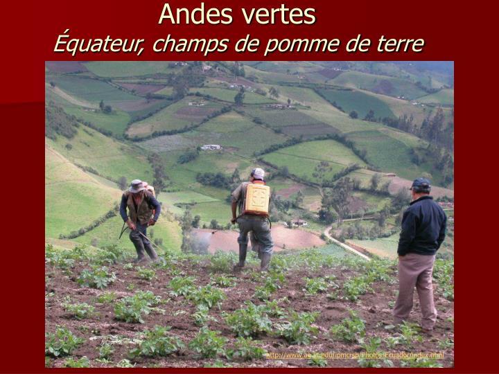 http://www.ag.vt.edu/ipmcrsp/Photos/Ecuador/index.html