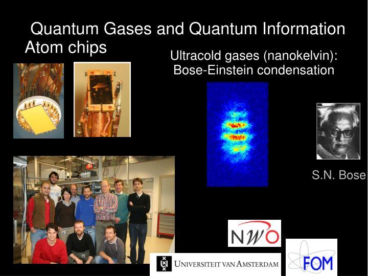 Quantum Gases and Quantum Information