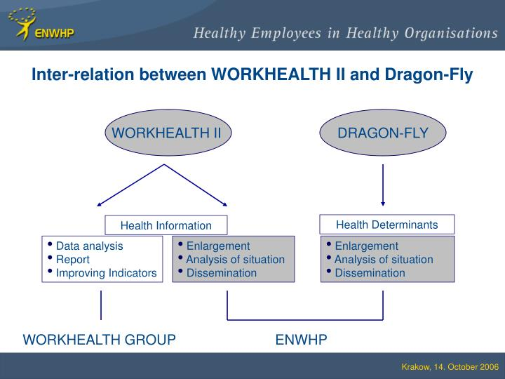 Inter-relation between WORKHEALTH II and Dragon-Fly