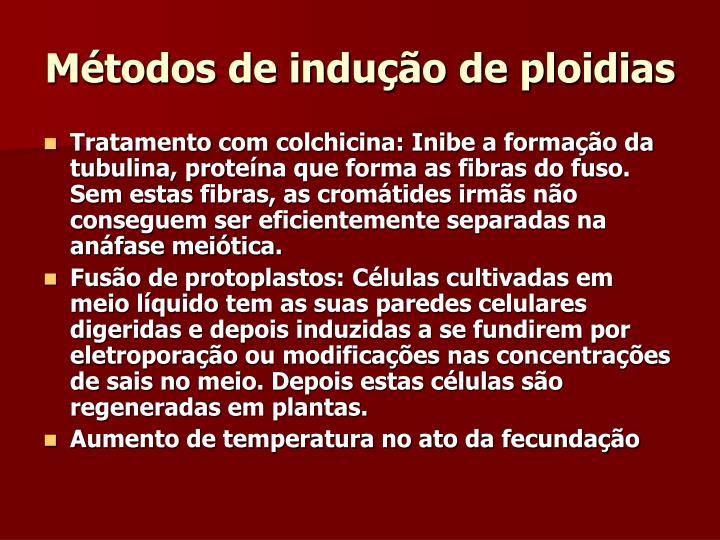 Métodos de indução de ploidias
