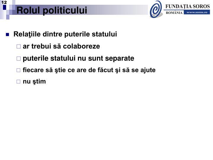 Rolul politicului
