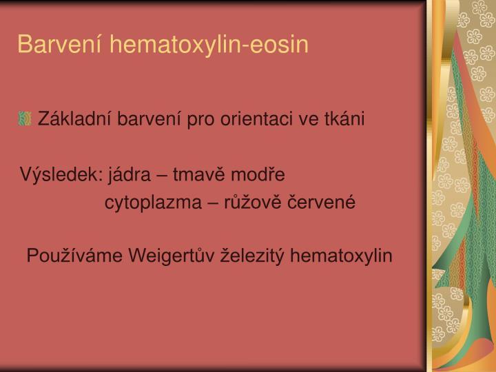 Barvení hematoxylin-eosin