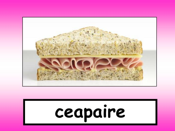 ceapaire