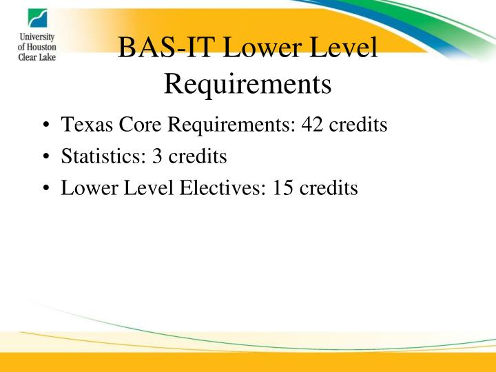 BAS-IT Lower Level Requirements