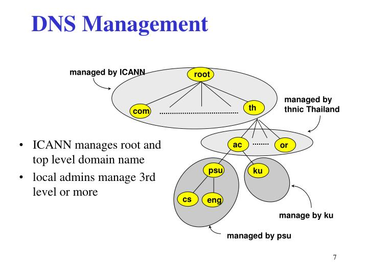 Name Root: The Domain Name System PowerPoint Presentation