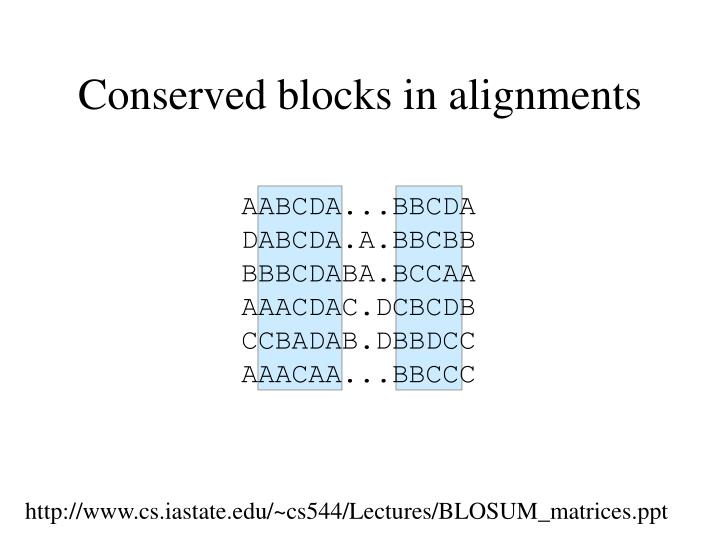 Conserved blocks in alignments