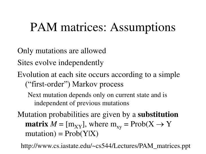 PAM matrices: Assumptions