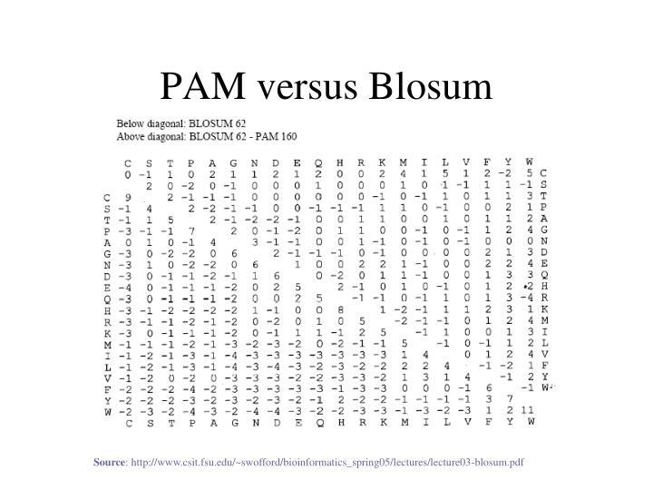 PAM versus Blosum