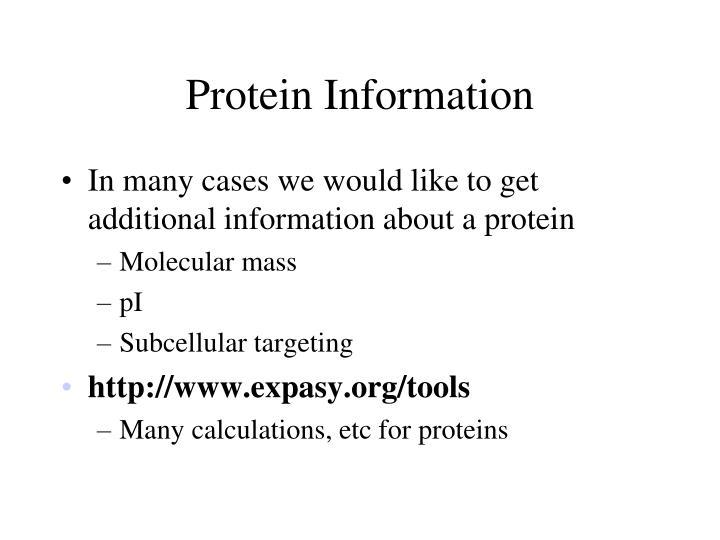 Protein Information
