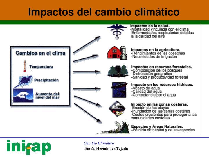 Impactos del cambio climático