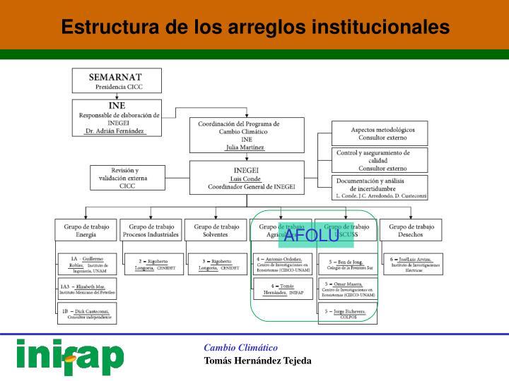 Estructura de los arreglos institucionales