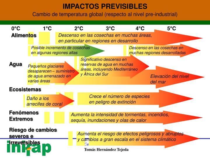 IMPACTOS PREVISIBLES