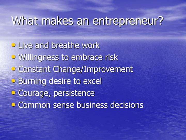What makes an entrepreneur?