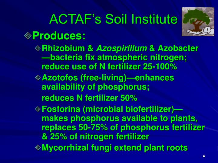 ACTAF's Soil Institute