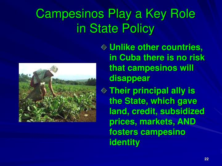Campesinos Play a Key Role