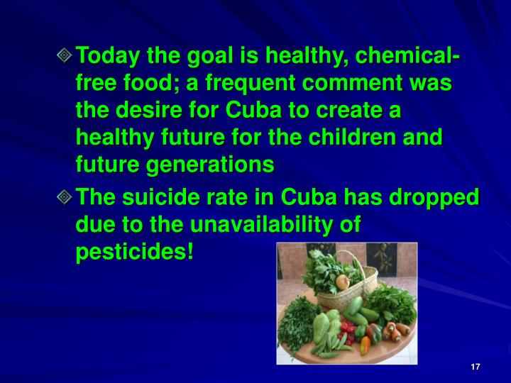 Today the goal is healthy, chemical-free food; a frequent comment was the desire for Cuba to create a healthy future for the children and future generations