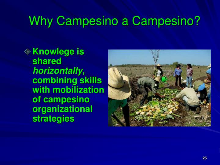 Why Campesino a Campesino?