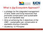 what is the ecosystem approach