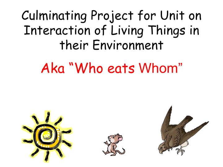 Culminating project for unit on interaction of living things in their environment aka who eats whom