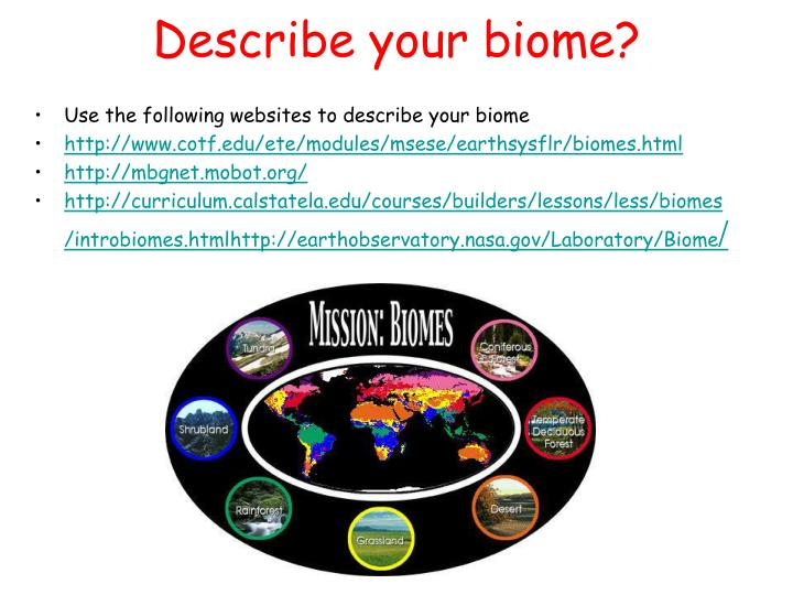 Describe your biome?