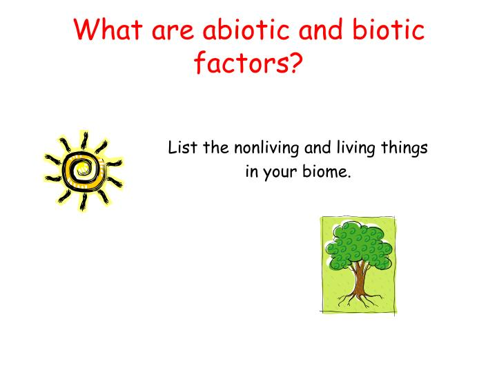 What are abiotic and biotic factors?
