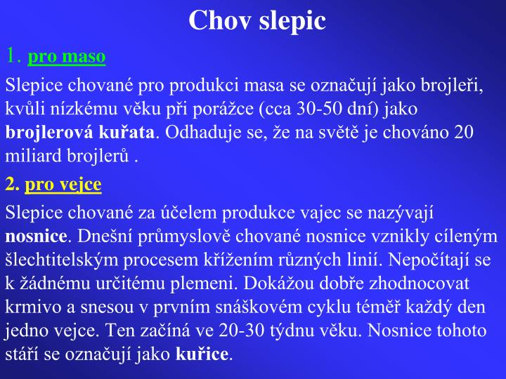 Chov slepic