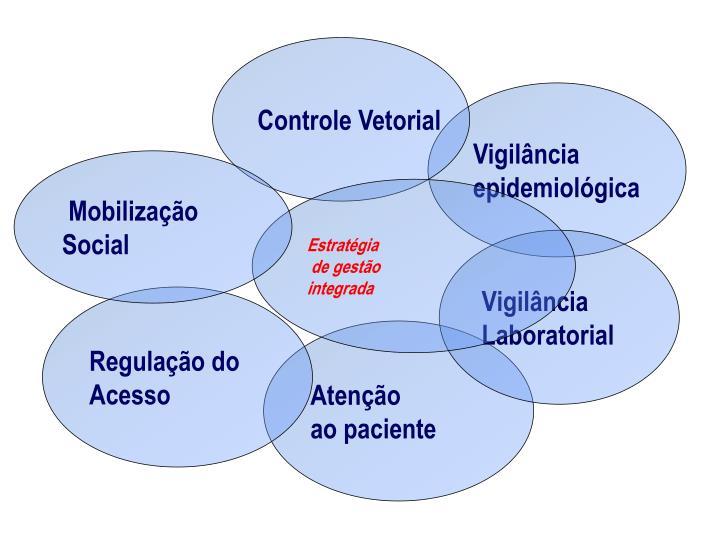 Controle Vetorial