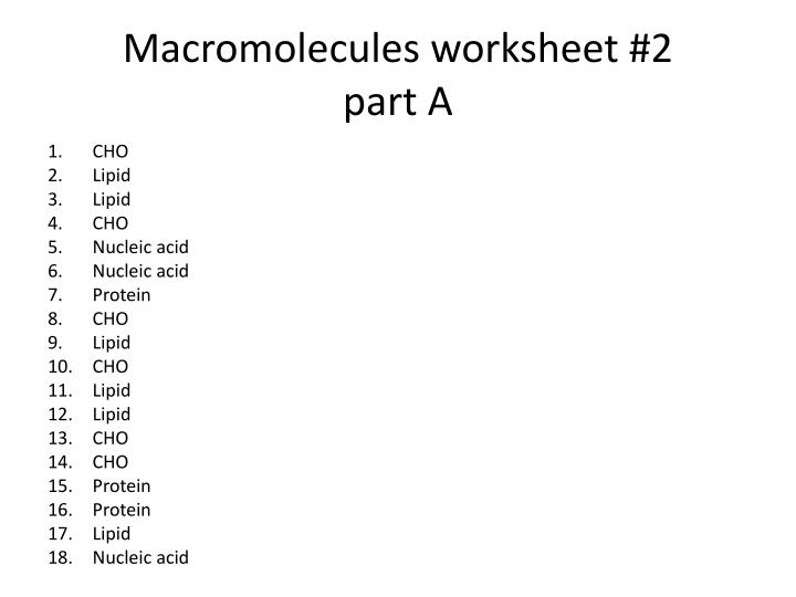 Macromolecules worksheet #2