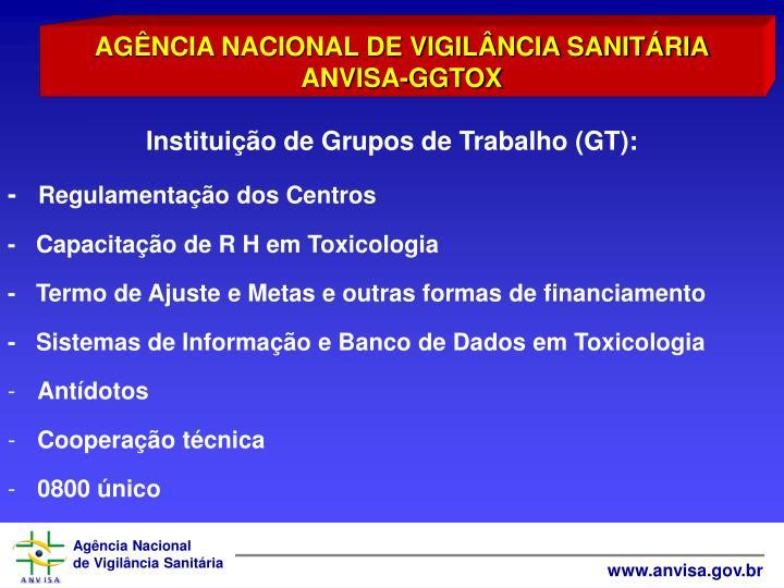 Instituio de Grupos de Trabalho (GT):