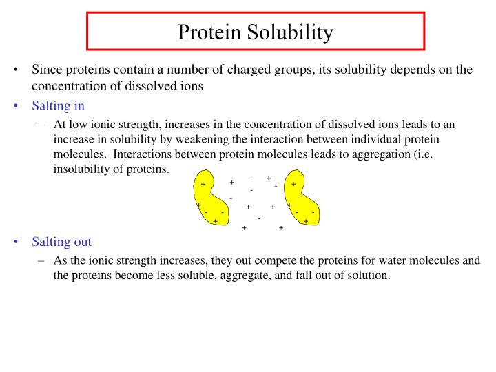 Protein Solubility