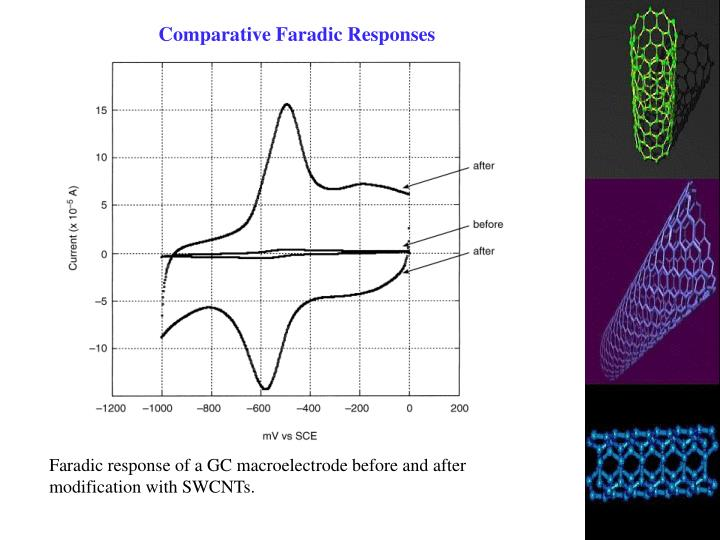 Comparative Faradic Responses