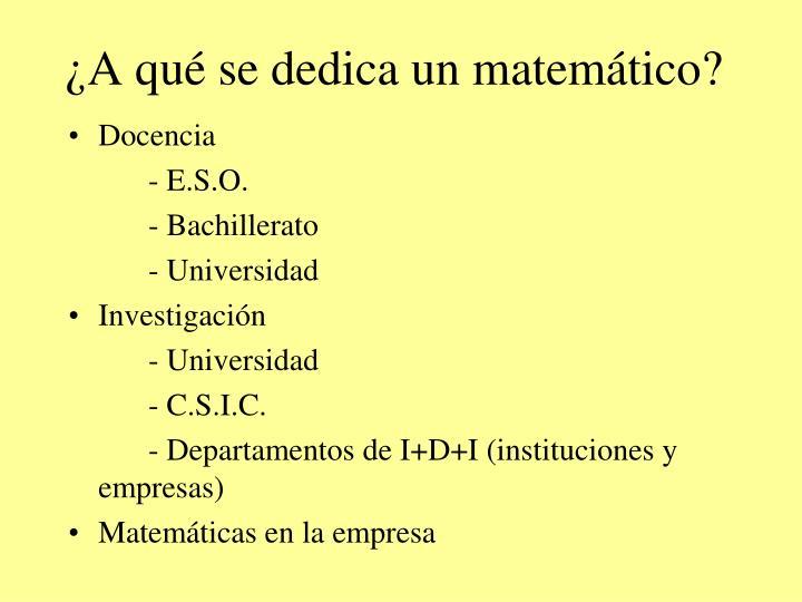 ¿A qué se dedica un matemático?