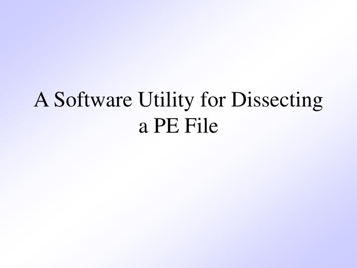 A Software Utility for Dissecting a PE File